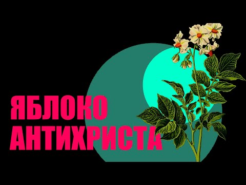 История повседневности: адский корнеплод и картофельные бунты в России.