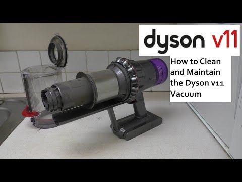 How to Clean and Maintain the Dyson V11 Cordless Vacuum Cleaner