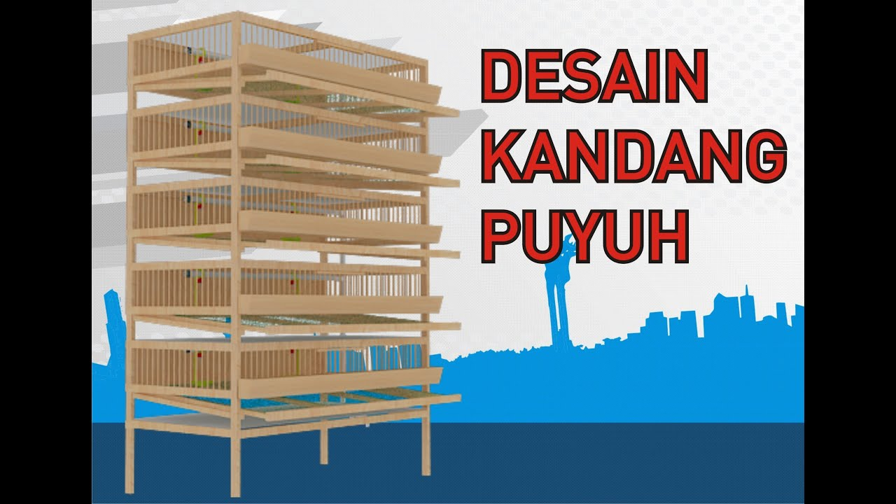 Quail Cage Plan / Desain Kandang Puyuh - YouTube
