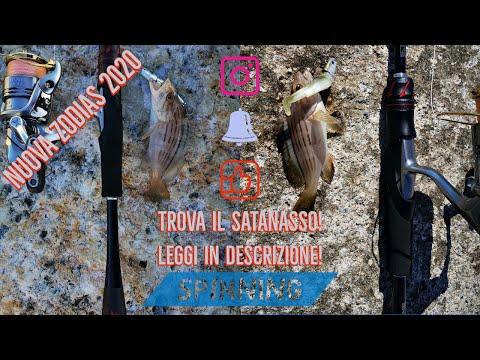 TROVATE IL SATANASSO! - Light spinning con la nuova ZODIAS BY SHIMANO! Prima uscita - clipangler