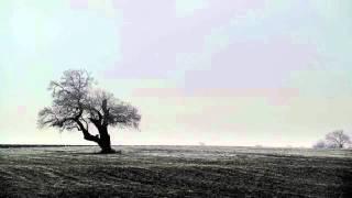 InstrumentAL// Pas De ParadiS Hugo de TSRCrew