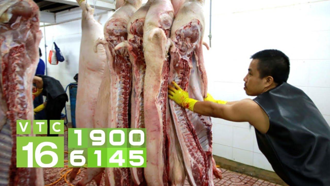 Thịt lợn 200.000 đồng/kg, đắt chưa từng có trong lịch sử | VTC16