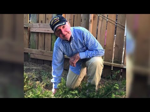 97-year-old WWII veteran's message about national anthem protests goes viral