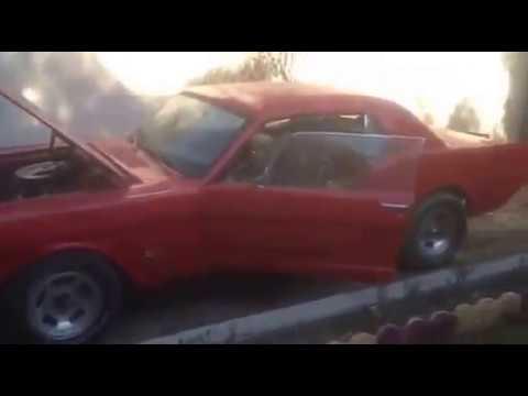 فورد موستنك 1966 _ muscle cars in iraq