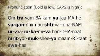 How to pronounce Maha Mrityunjaya Mantra for Havan Ceremony