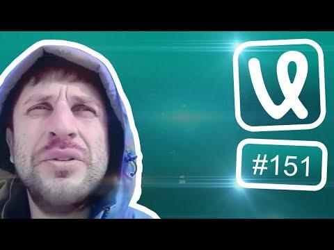 Лучшие ролики недели #151 Яжемать!