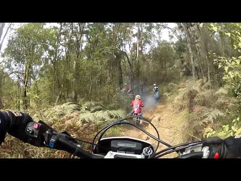 Kids Bike Adventure in Pacific Park
