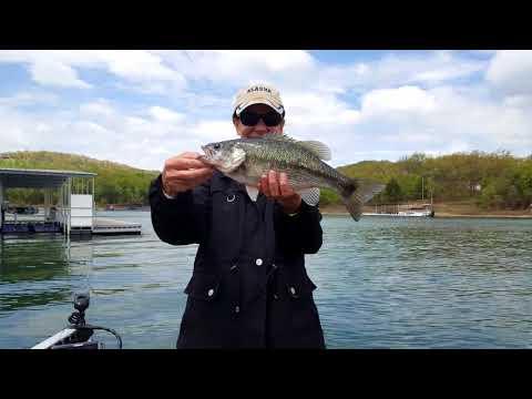 Table Rock Lake Video Fishing Report May 1, 2018