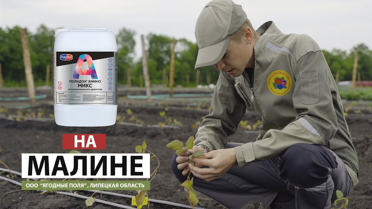 ПОЛИДОН Амино Микс на малине - YouTube