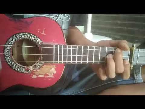 lily---alan-walker-melodi-kentrung-senar-3