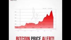 Today's Belfrics Bitcoin Price Alert