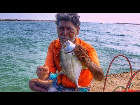 Fishing In India | Old Man Catching Trevally Fish From Saltwater River