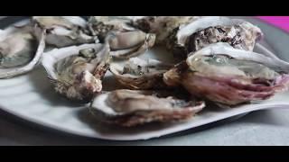 HÀU NƯỚNG MỠ HÀNH NGON ( make grilled oysters ) | DÒNG THỜI GIAN TV