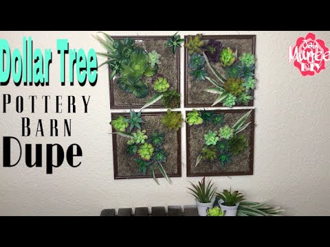 Dollar Tree Diy Pottery Barn Dupe Succulent Wall Youtube