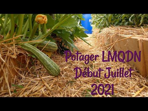 Potager Début Juillet 2021- LMQDN