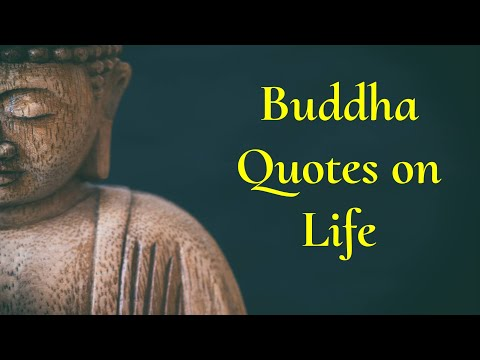 Buddha Quotes On Life | Buddha Thoughts In English | Positive Zone