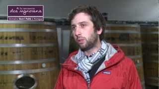 Rencontre avec Paul-Henry Pellé ... vigneron à Menetou-Salon et Sancerre