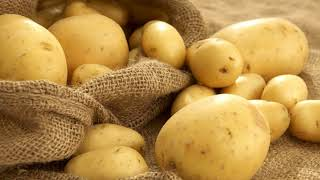 Можно ли употреблять картофель при диете для похудения?