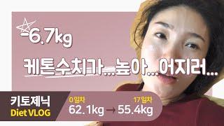 -6.4kg / 또왔다 키토플루/키토제닉식단 다이어트 …