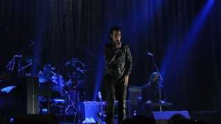 "Nick Cave and the Bad Seeds ""Push the Sky Away"" - LIVE 2013 (Hamburg, Germany) - HQ"