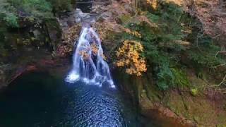赤目四十八滝の紅葉のドロー...