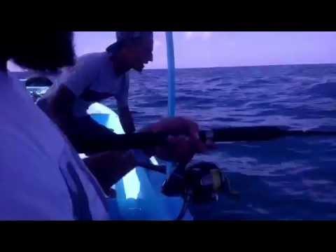 jigging in alexandria 90m deep water