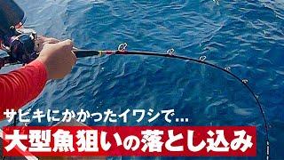 釣りスギ四平 「釣りスギ四平」の最新&最高な釣り動画をチェック!
