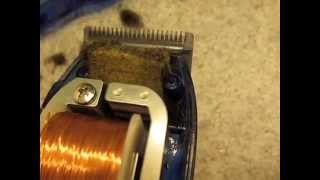 Blades are NOT moving HOW TO Fix a broken Hair clipper Wahl Conair Maintenance