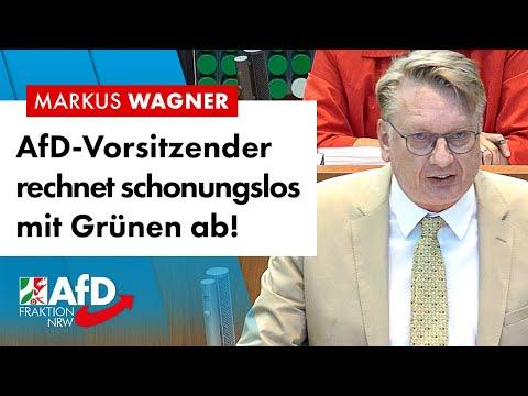 Schonungslose Abrechnung mit den Grünen! – Markus Wagner (AfD)