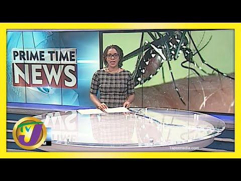 Climate Change Disease Projections | TVJ News | Jamaica News
