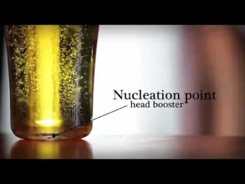 Arcoroc Ultimate Nucleated Beer Glass