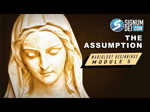 Mariology Beginnings: The Assumption of Mary