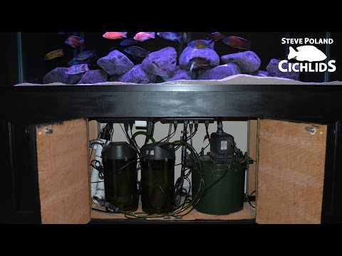 125g African Cichlid Aquarium - Equipment Walkthrough