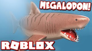 BUYING THE *NEW* MEGALODON in SHARKBITE UPDATE!!  (Roblox)