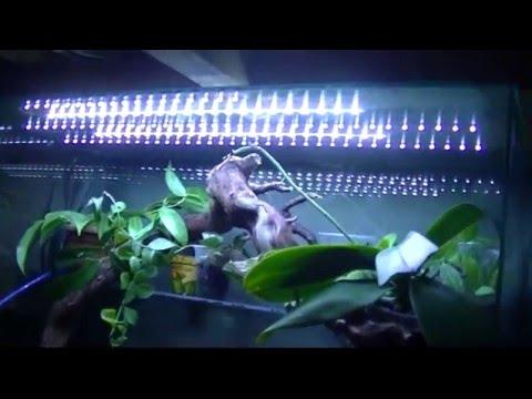 Смотреть Светодиодная подсветка в аквариум своими руками.