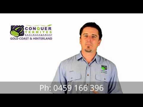 Meet David Bell - Conquer Termites Gold Coast