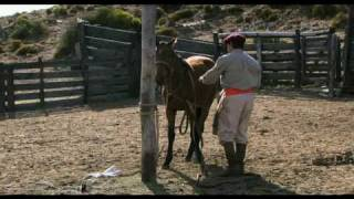 El Gaucho : DOMADOR full version