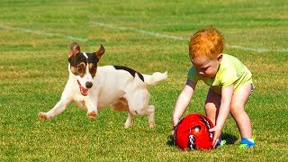 Dog Loves Baby| Laugh Your Head Off With Funniest Moments Dog Teaching Baby Playing Ball