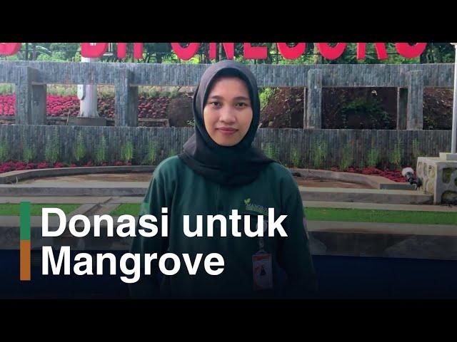 Galang Dana untuk Selamatkan Mangrove