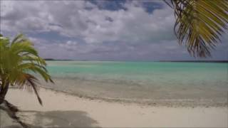 Cook Islands - Common Kings - Take Her