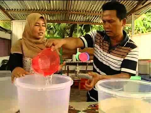 Pembuatan Virgin Coconut Oil