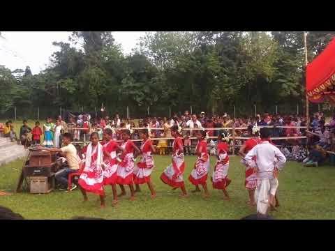 Assam deser chai ke Bagan sajan
