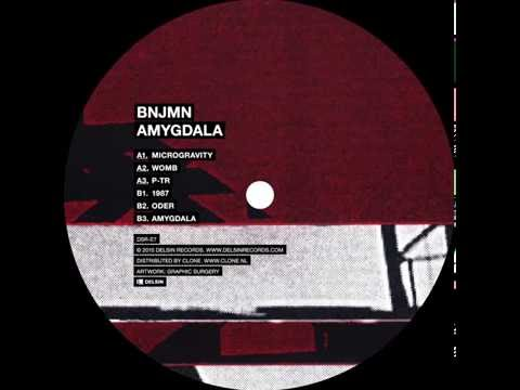 BNJMN - Amygdala - Delsin Records (dsr-e7) Mp3