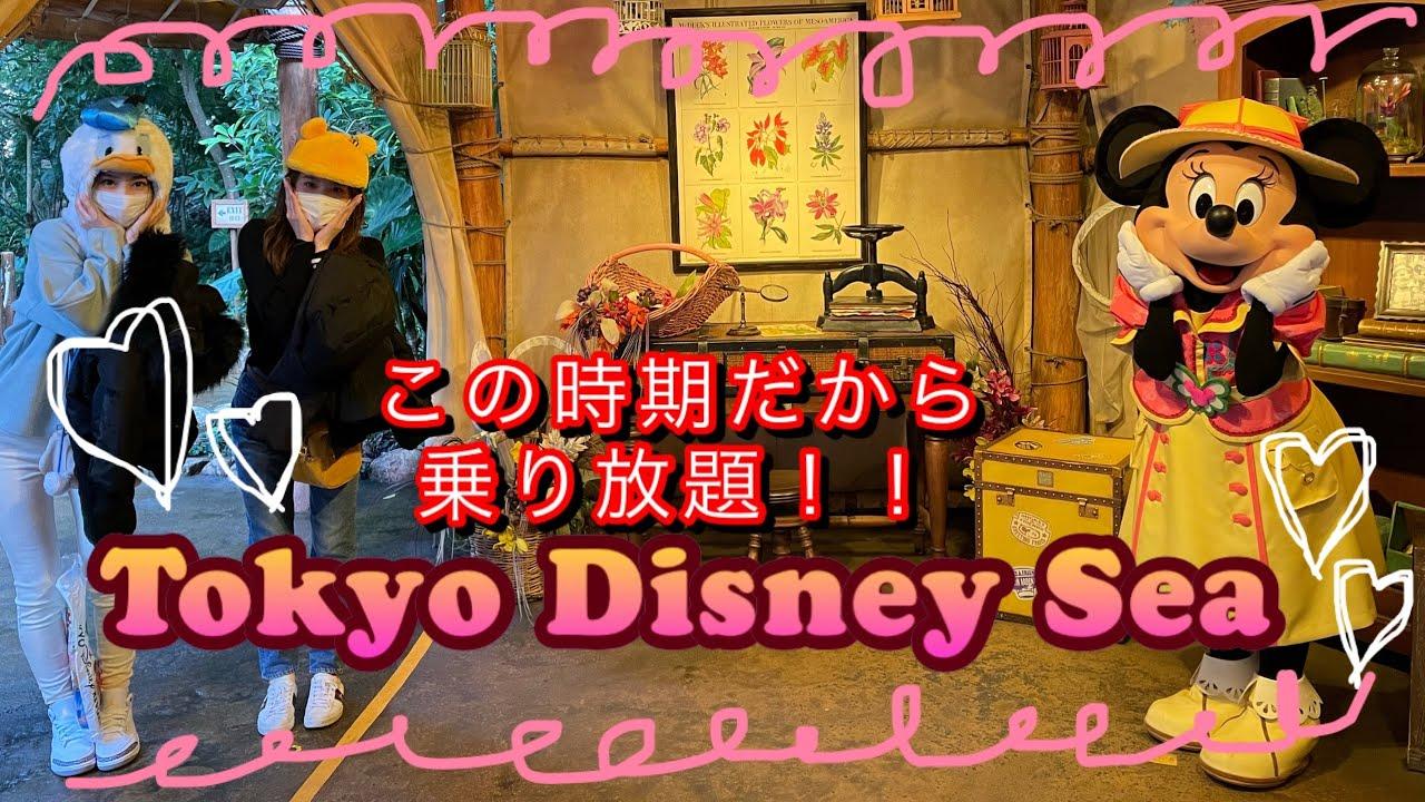 今だから乗り放題Disney!
