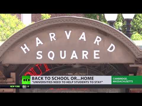 Back to school or…? | M.I.T, Harvard files lawsuits against new visa rule for foreign students