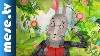 Varró Dániel: Nyúl tavaszi éneke (mese, rajzfilm, animáció, MOME)