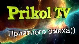 СМЕЛЫЕ КОШКИ!!!))))