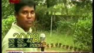 Mallavi 2001 And 2008