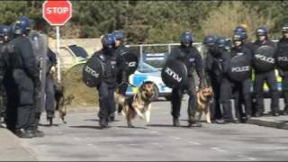 Kent Police Dog Section