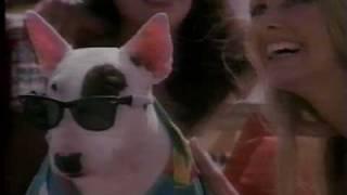 Spuds McKenzie Bud Light with bikini girls on the beach 1987